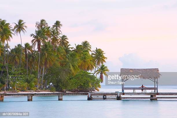 tobago, pigeon point, woman sitting under thatched canopy on wooden jetty, rear view - trinidad and tobago stock pictures, royalty-free photos & images