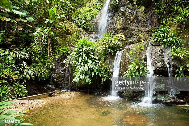 Tobago Waterfall