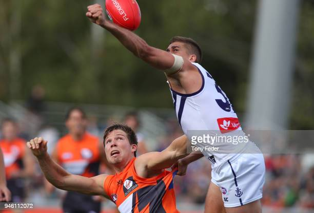 Toby Greene of the Giants contests the ball during the round four AFL match between the Greater Western Sydney Giants and the Fremantle Dockers at...