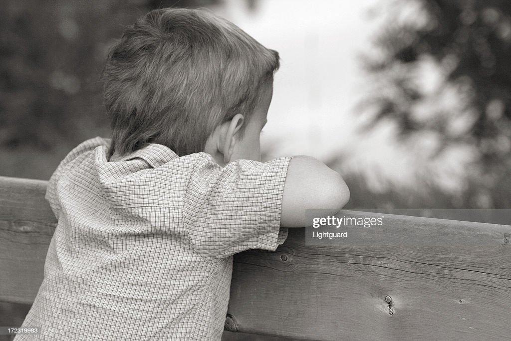 toby thinks : Stock Photo