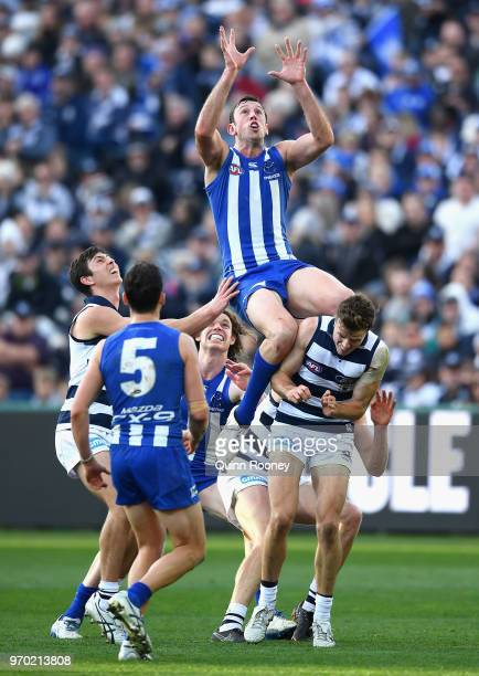 Todd Goldstein of the Kangaroos marks over the top of Jordan Murdoch of the Cats during the round 12 AFL match between the Geelong Cats and the North...