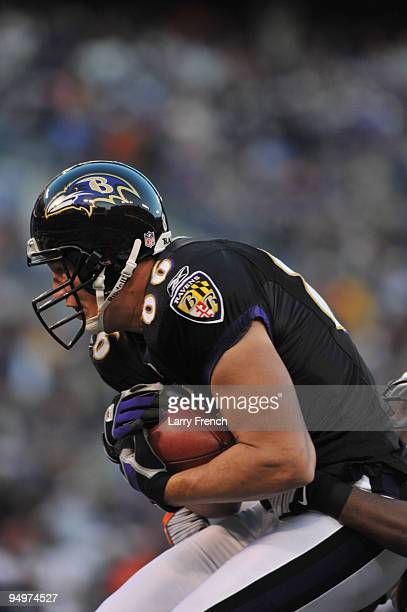 Todd Heap of the Baltimore Ravens hauls in a touchdown pass against the Chicago Bears at MT Bank Stadium on December 20 2009 in Baltimore Maryland