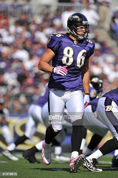 Todd Heap of the Baltimore Ravens runs a pattern during the game against the Cincinnati Bengals at MT Bank Stadium on October 11 2009 in Baltimore...