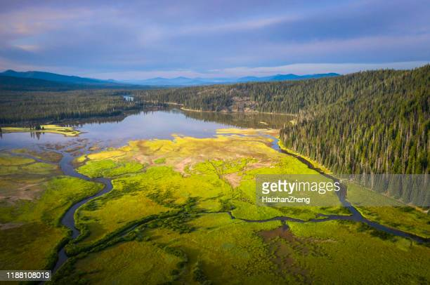 todd lake, oregon, usa - deschutes national forest stock pictures, royalty-free photos & images