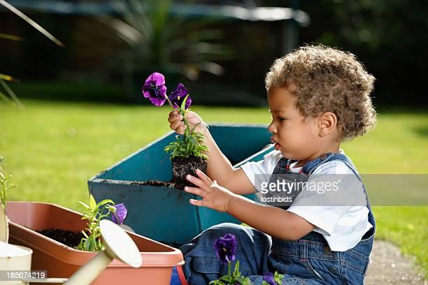 Para los más pequeños, el análisis antes de la implantación de flor