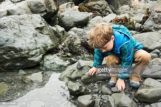 Toddler boy explores tide pool at Patricks Point State Park, California.