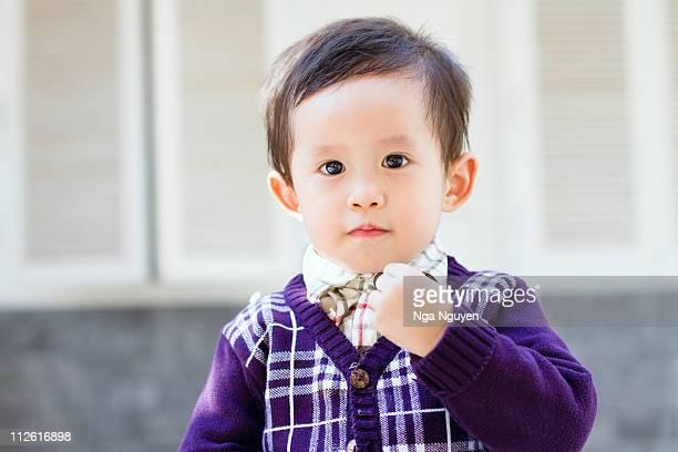 toddler boy in purple cardigan - nga nguyen stock pictures, royalty-free photos & images