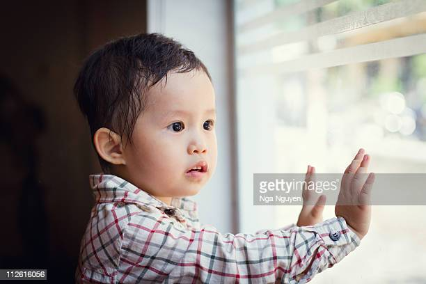 toddler boy looking outside window - nga nguyen stock pictures, royalty-free photos & images