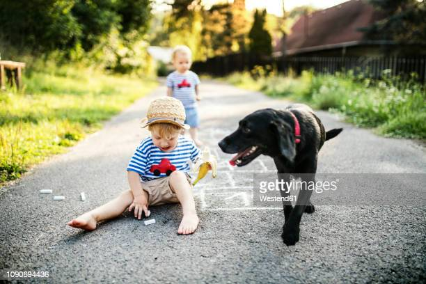 toddler boy playing with chalks on the street - dog eats out girl stock photos and pictures