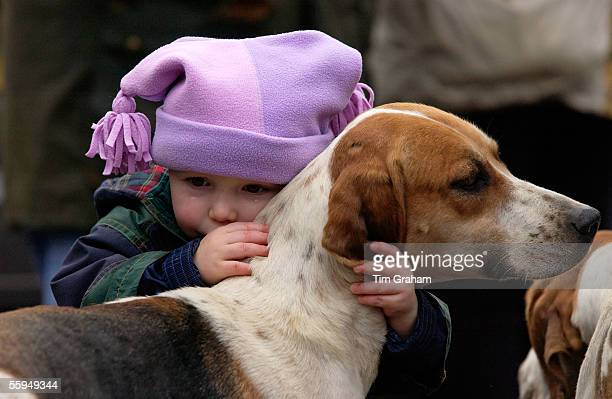 A toddler crying whilst embracing a foxhound before the Heythrop New Year's Day Hunt in the Market Place in Stow on the Wold Oxfordshire