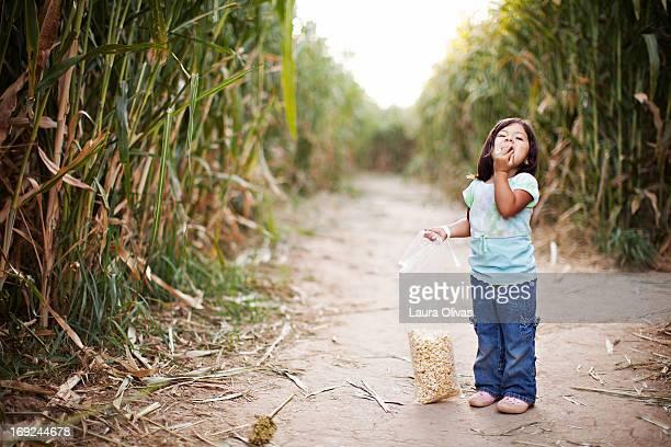 Toddler Eats Popcorn In Corn Maze