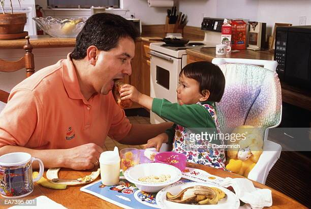 toddler feeding father bagel at kitchen table - filipino family eating stock pictures, royalty-free photos & images