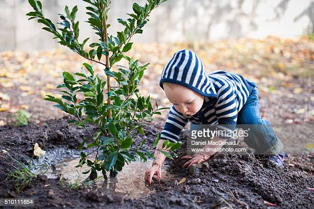 a toddler girl playing in the mud while helping with gardening - lama imagens e fotografias de stock