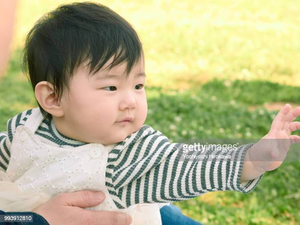 toddler girl ( 6-11 months ) portrait on lawn at park under sunshine - 6 11 months stock pictures, royalty-free photos & images