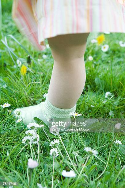 toddler girl standing on grass, low section - jelly shoe stock pictures, royalty-free photos & images