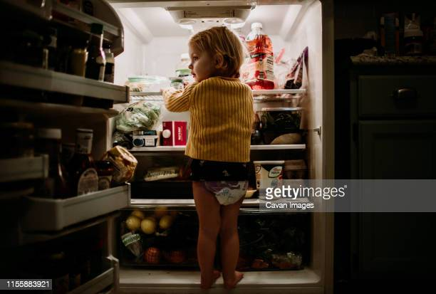 toddler has climbed into refrigerator and is standing there - frigo humour photos et images de collection