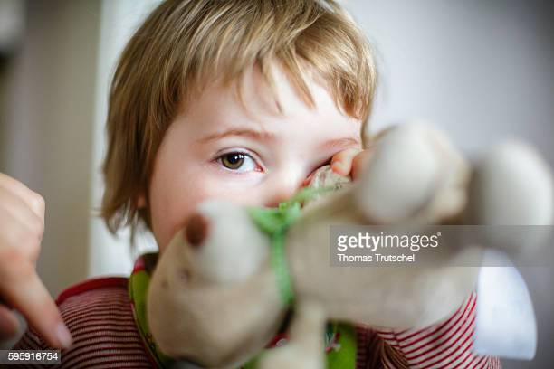 A toddler hides his face behind a stuffed animal on August 12 2016 in Berlin Germany