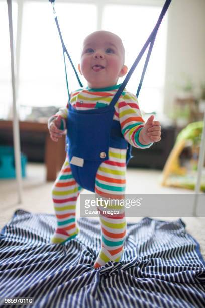 toddler in baby bouncer at home - バウンサー ストックフォトと画像