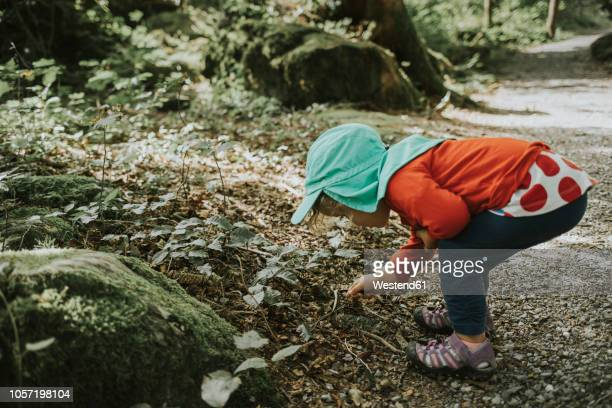 Toddler on a trip in forest