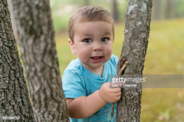 Toddler playing outside on a tree.