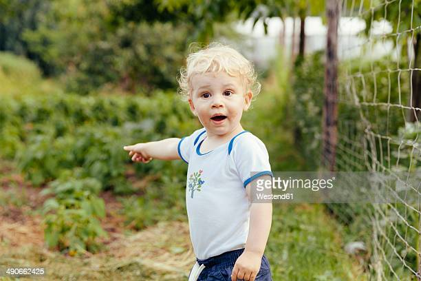 Toddler pointing at something in vegetable garden
