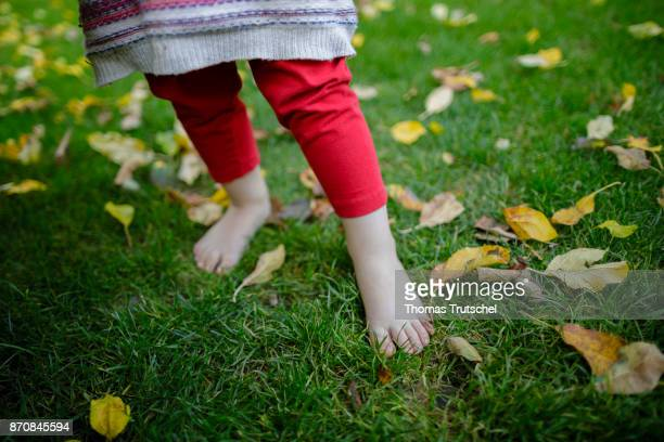 A toddler stands barefoot on a meadow on October 17 2017 in Berlin Germany