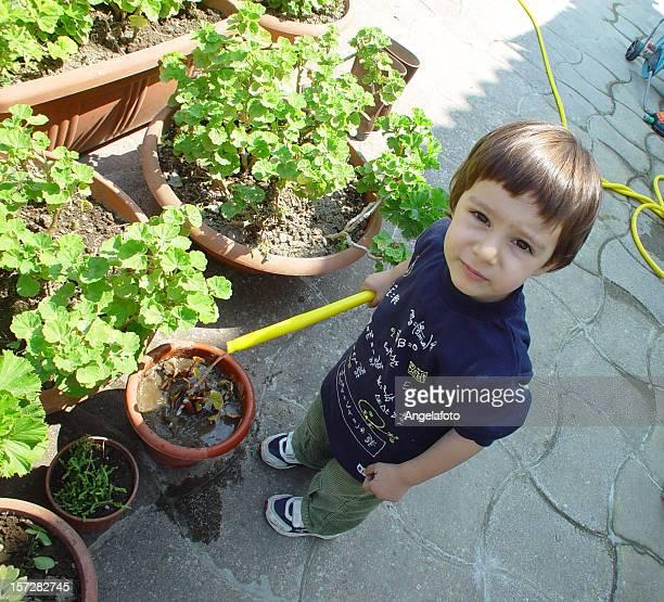 Niño plantas en el jardín de riego