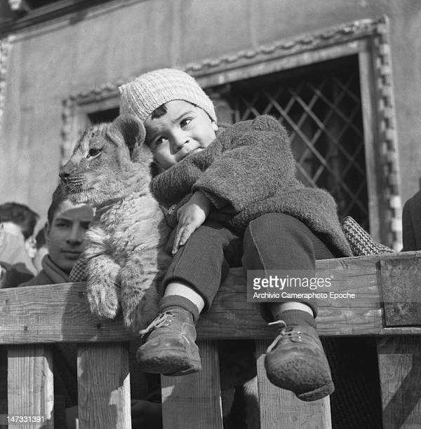 A toddlerposing with the circus lion cub Venice 1954