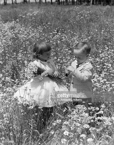 Toddlers In Field Of Daisies. They Wear Fancy Clothes Dress And Suit. The Girl Holds Daisy Bouquet While The Boy Pulls Daisy Petals For Loves Me Not Game, Symbol Of Romance Spring Love.  (Photo by H. Armstrong Roberts/Retrofil