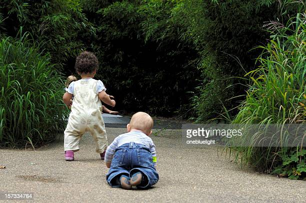 Toddlers Walking and Crawling