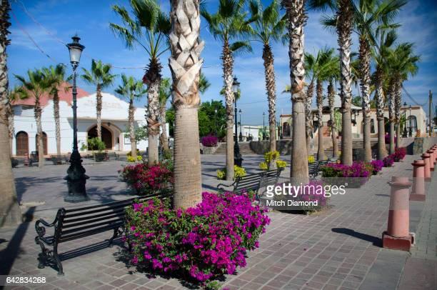 todos santos town square - todos santos mexico fotografías e imágenes de stock