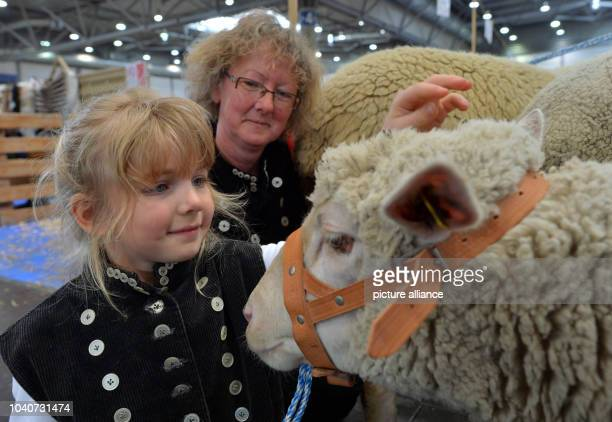 Together with her six year old granddaughter Mia the shepherd Jutta Kassuhn from SaxonyAnhalt present their sheep at Agra Agricultural Fair in...