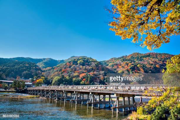 Togetsukyo Bridge across hozugawa river and Yellow Ginko Tree with Colourful Maple Tree on the Mountain Background, Arashiyama, Kyoto in Autumn