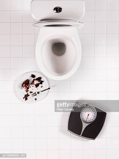 Toilet bowl, bathroom scales and chocolate cake, directly above