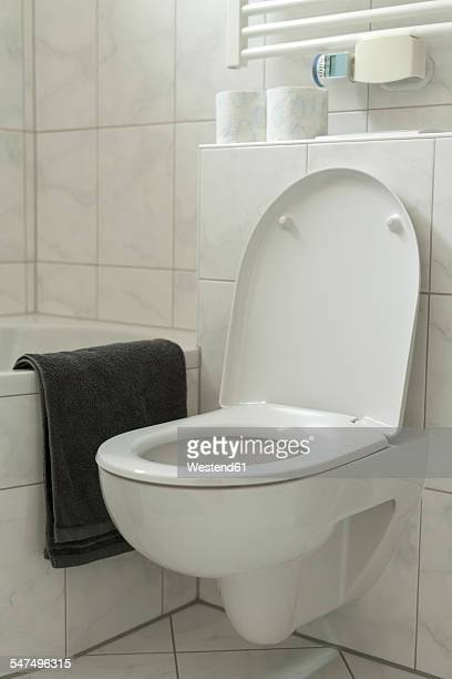 Toilet in bathroom with lid open