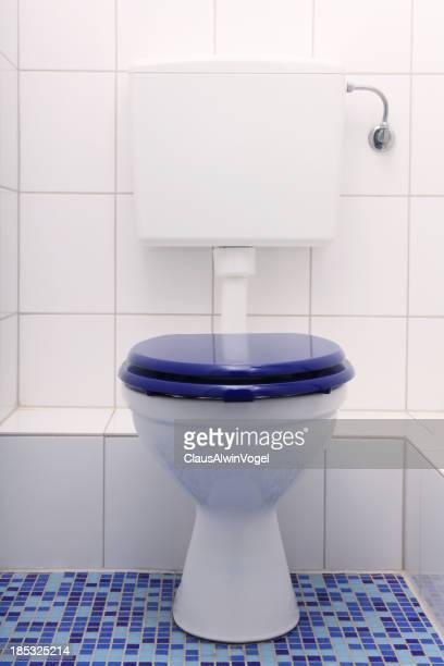 toilet in blue