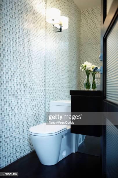 Toilet in clean modernist bathroom
