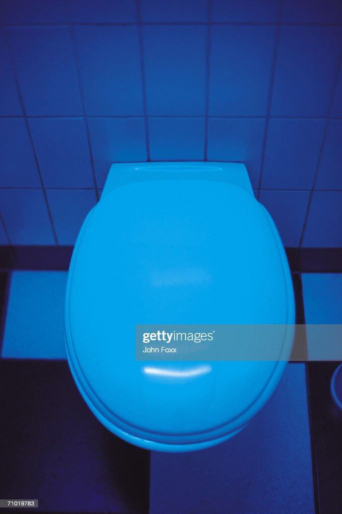 toilet : Stock Photo