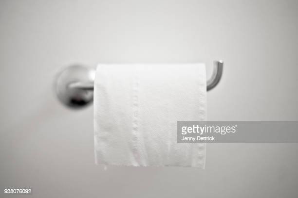 toilet roll - toilet paper stock pictures, royalty-free photos & images