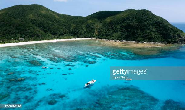 tokashiki island, coral reef and clear blue tropical water from above, okinawa, japan - vacanza al mare foto e immagini stock