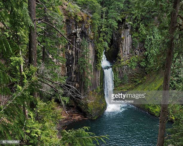 toketee falls, north umpqua river, oregon - basalt stock pictures, royalty-free photos & images