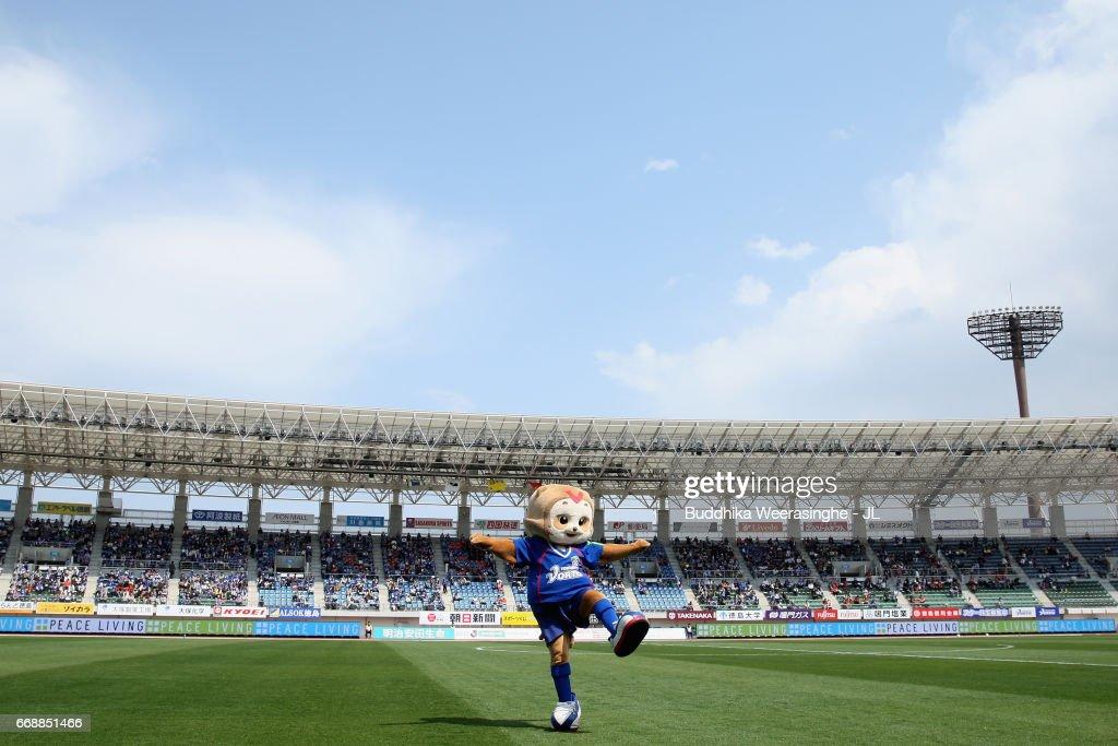Tokushima Vortis v Nagoya Grampus - J.League J2 : ニュース写真