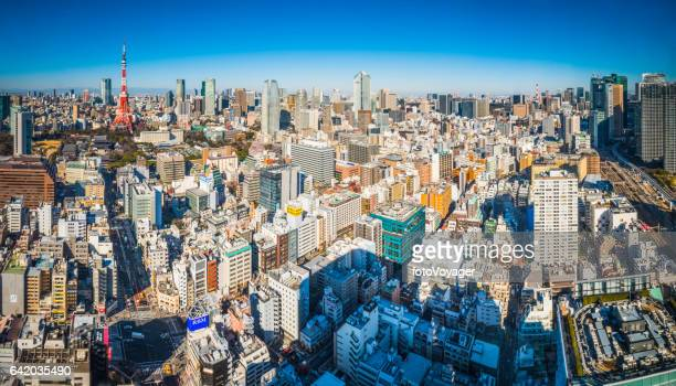 Tokyo aerial cityscape over crowded skyscraper skyline panorama Japan