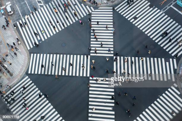 tokyo aerial - pedestrian crossing stock photos and pictures