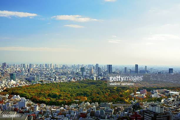 Tokyo aerial view at sunny autumn day