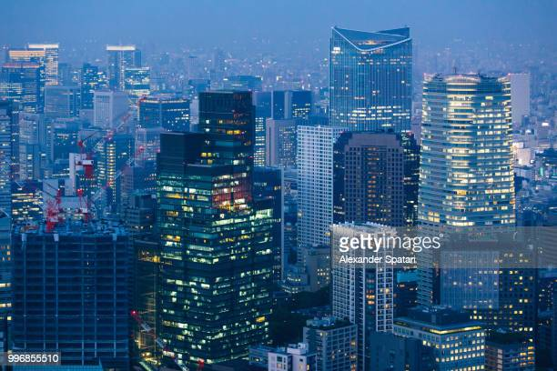 Tokyo aerial view cityscape with illuminated skyscrapers at night, Japan