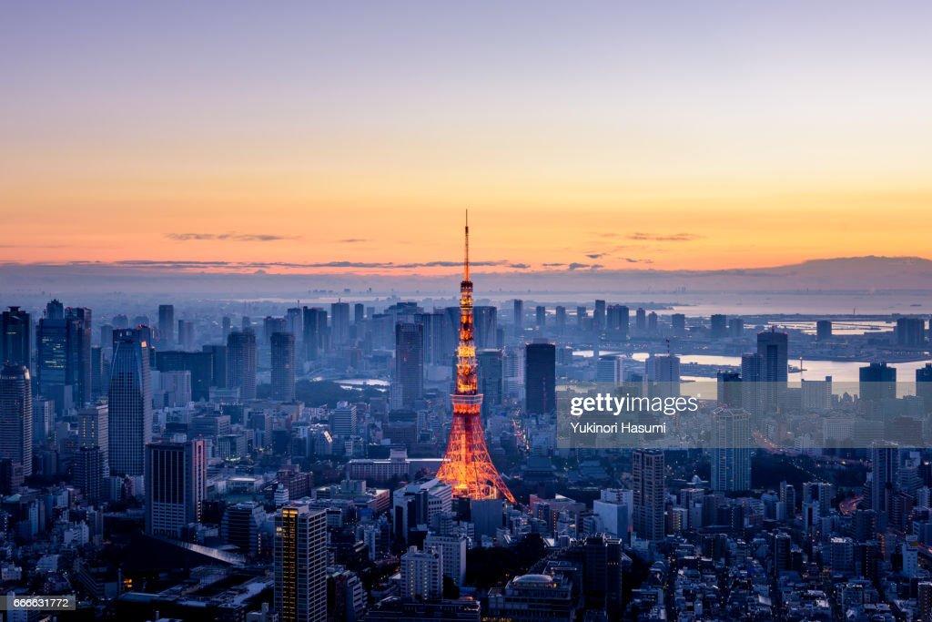 Tokyo at Dawn : Stock Photo