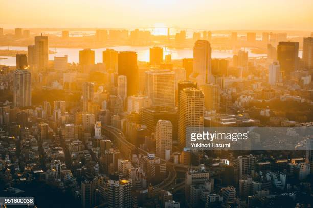 tokyo at dawn - tokyo japan stock pictures, royalty-free photos & images