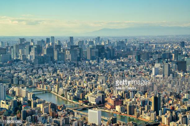 tokyo at dusk - mauro tandoi stock pictures, royalty-free photos & images