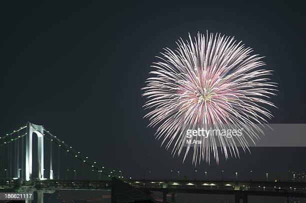 Tokyo bay grand fireworks